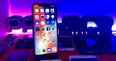 Apple iOS software flags problemas