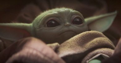 The Mandalorian Baby Yoda Merchandise