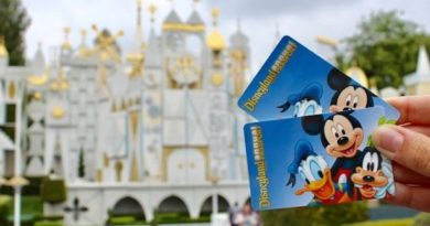 disneyland flex passport