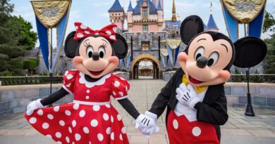 Disneyland Unions Plan Protest Against Rapid Reopening of Disney Theme Parks