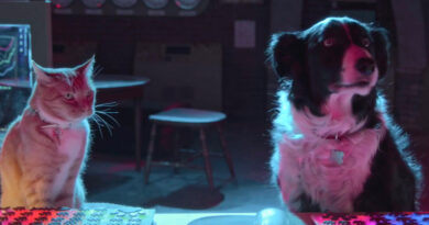trailer round-up cats and dogs 3
