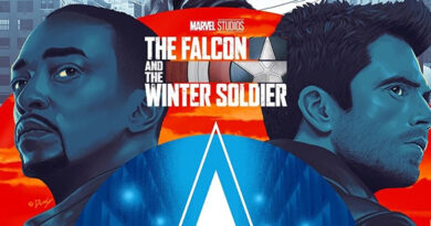 The Falcon and the Winter Soldier - Doaly Poster